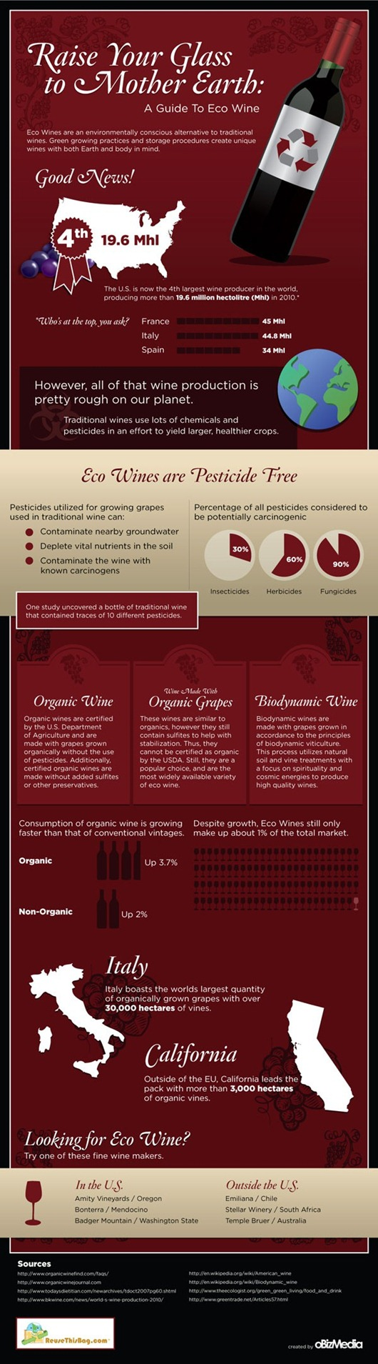 Infographic Guide to Eco-Wine